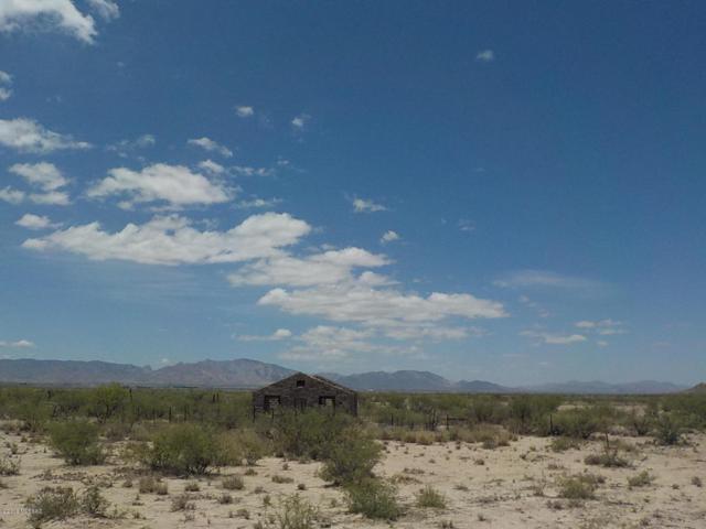 40ac S Kansas Settlement Road, Cochise, AZ 85606 (#21819496) :: Long Luxury Team - Long Realty Company