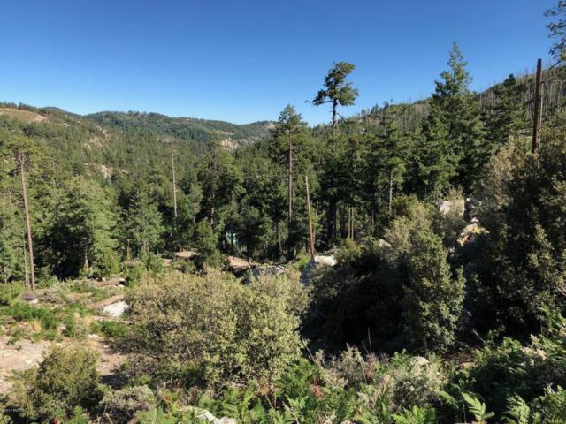 11204 E Upper Goat Hill Road E ., Tucson, AZ 85718 (#21819506) :: Long Realty Company