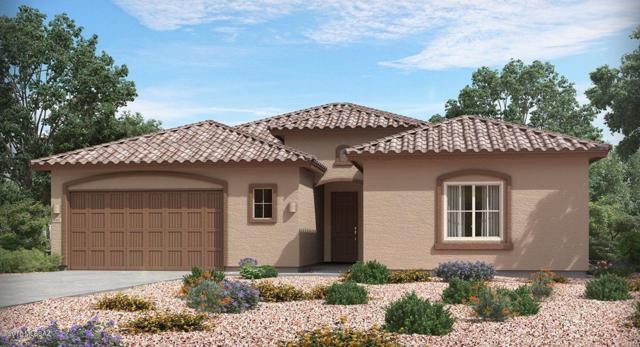 14342 N Whitehorn Place, Marana, AZ 85658 (#21819508) :: RJ Homes Team