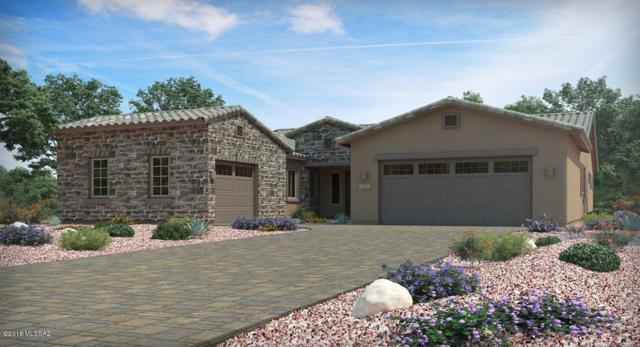 6725 W Red Hawk Place, Marana, AZ 85658 (#21819510) :: RJ Homes Team