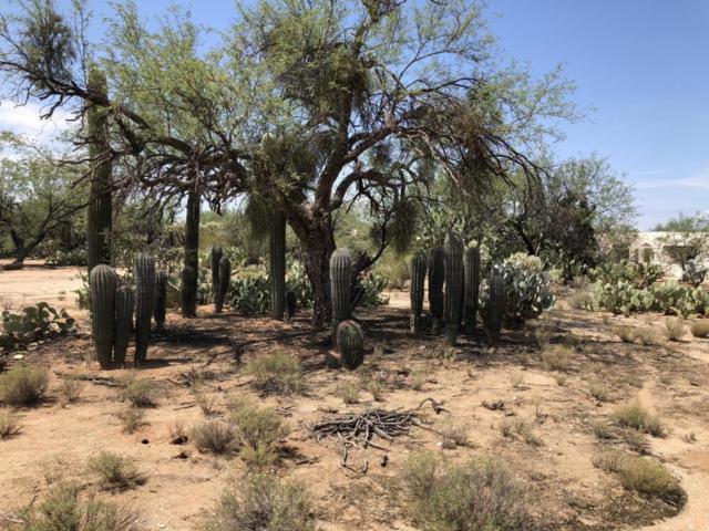 11548 E Thunderbird Trail, Tucson, AZ 85749 (#21819549) :: The Josh Berkley Team