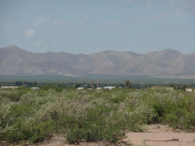 TBD Lots 1 And 4 Wiggins Road #1, Mc Neal, AZ 85617 (#21819666) :: Long Realty Company