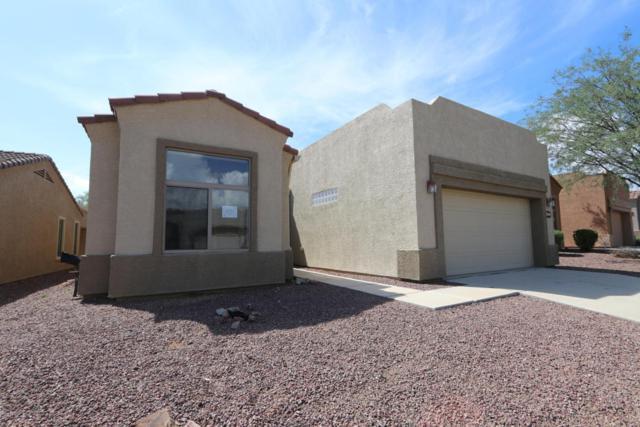 685 W Shadow Wood Street, Green Valley, AZ 85614 (#21819715) :: Stratton Group