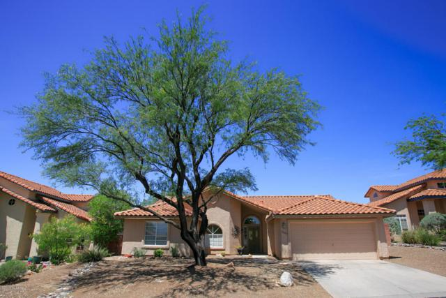 5565 N Barrasca Avenue, Tucson, AZ 85750 (#21819721) :: The Josh Berkley Team