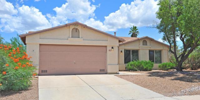 1404 N Desert Mallow Drive, Tucson, AZ 85715 (#21819724) :: The Josh Berkley Team