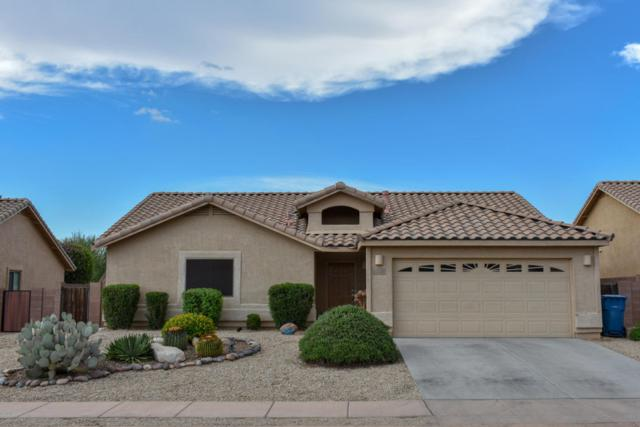1061 E Stronghold Canyon Lane, Sahuarita, AZ 85629 (#21819738) :: Stratton Group