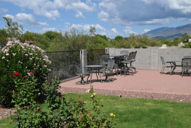 9931 E Rocky Vista Drive, Tucson, AZ 85748 (#21819741) :: The Josh Berkley Team