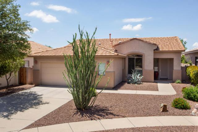 231 W Carlynn Cliff Place, Oro Valley, AZ 85755 (#21819782) :: The Josh Berkley Team