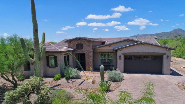12595 N Distant Wash Drive NW, Marana, AZ 85658 (#21819807) :: Gateway Partners at Realty Executives Tucson Elite