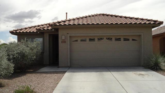 14367 N Bannerstone Court, Marana, AZ 85658 (#21819844) :: Gateway Partners at Realty Executives Tucson Elite