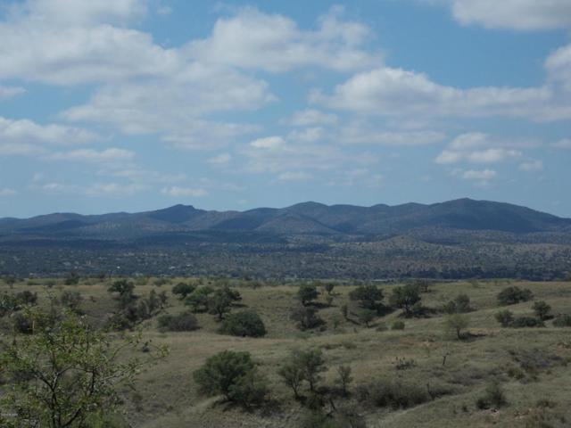 Sierra Grande Ranch Road B, Sonoita, AZ 85637 (#21819915) :: Long Realty Company