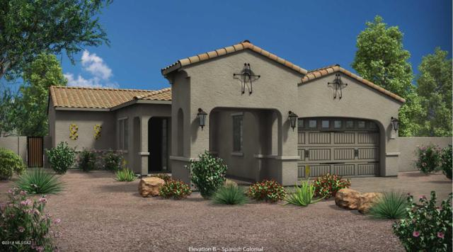 13379 N Flaxleaf Place, Tucson, AZ 85755 (#21819966) :: Gateway Partners at Realty Executives Tucson Elite