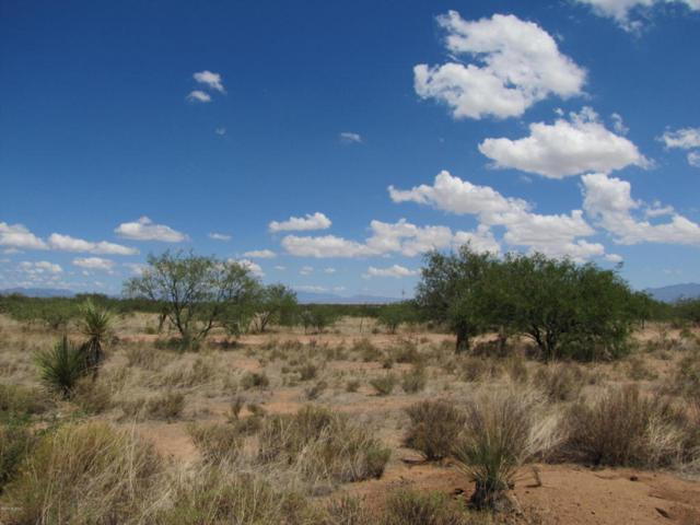 TBD W Treasure Road #6, Pearce, AZ 85625 (#21819987) :: The Josh Berkley Team