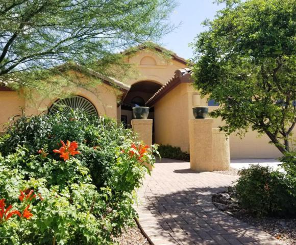 1915 E Desert Lark Pass, Green Valley, AZ 85614 (#21819992) :: Stratton Group