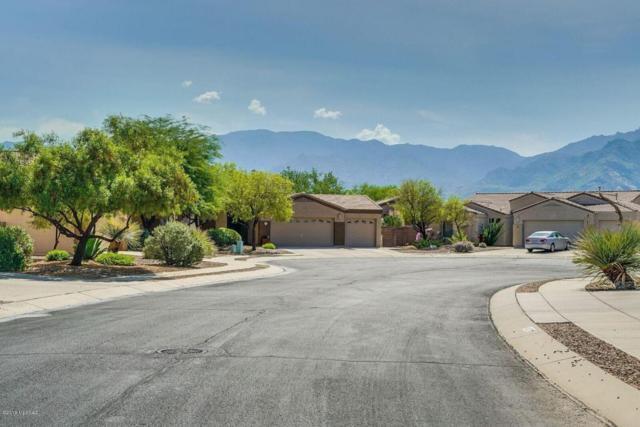 254 W La Veta Court, Tucson, AZ 85737 (#21819995) :: Stratton Group