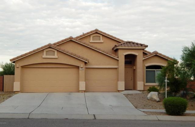 17244 S Sienna Bluffs Trail, Corona de Tucson, AZ 85641 (#21820009) :: Stratton Group