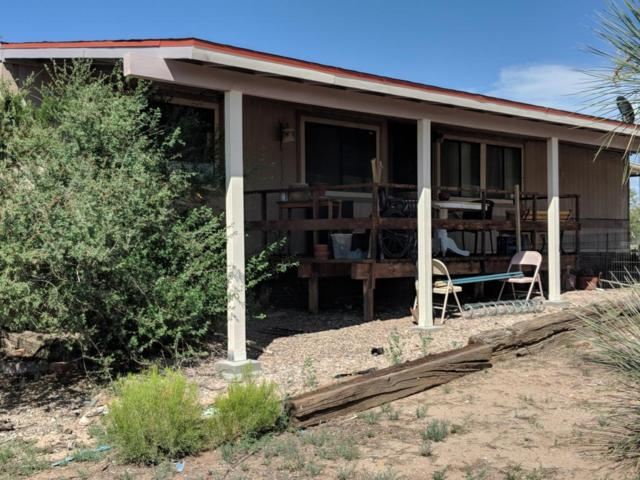 25345 E Comanche Trail, Benson, AZ 85602 (#21820013) :: RJ Homes Team