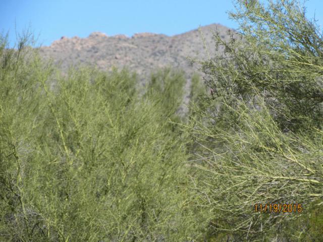 13420 N Wild Burro Road, Marana, AZ 85658 (#21820016) :: Gateway Partners at Realty Executives Tucson Elite
