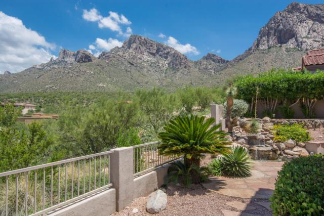 9918 N Bighorn Butte Drive, Oro Valley, AZ 85737 (#21820017) :: Gateway Partners at Realty Executives Tucson Elite