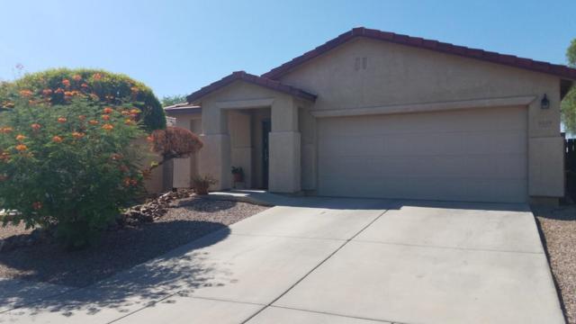 9339 N June Bug Drive, Tucson, AZ 85742 (#21820051) :: Gateway Partners at Realty Executives Tucson Elite