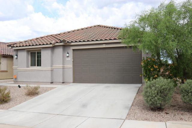 11574 W Foxberry Drive, Marana, AZ 85653 (#21820343) :: Long Realty Company