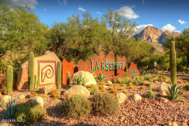 1759 E Via Colomba Bianca, Oro Valley, AZ 85737 (#21820346) :: Long Realty Company