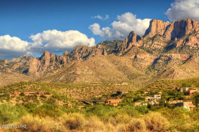 1821 E Vico Bella Luna, Tucson, AZ 85737 (#21820348) :: Long Realty Company