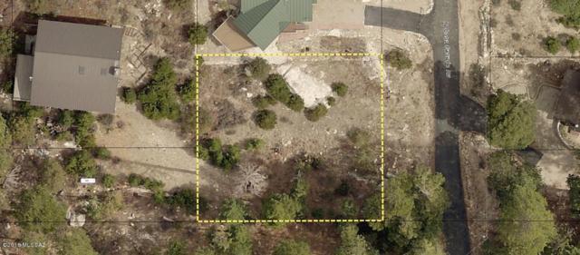 12601 N Casa Grande Avenue N #11, Mt. Lemmon, AZ 85619 (#21820619) :: Long Realty Company