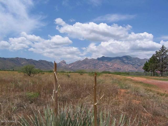 2 .35 Ac On Windsong Lane #1, Pearce, AZ 85625 (#21820743) :: Gateway Partners at Realty Executives Tucson Elite