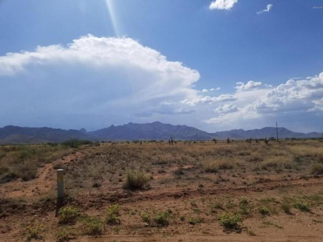 TBD E March St #16, Pearce, AZ 85625 (#21820754) :: Gateway Partners at Realty Executives Tucson Elite