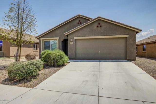 11513 W Stone Hearth Street, Marana, AZ 85658 (#21821061) :: The Josh Berkley Team