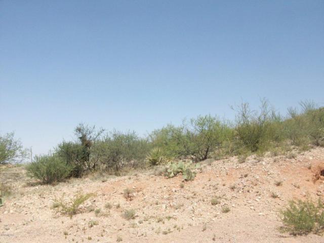 24325 E Piute Place #410, Benson, AZ 85602 (#21821229) :: Keller Williams