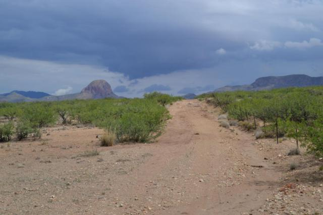Tbd 40Ac Indian Creek Road, Douglas, AZ 85607 (#21821272) :: Long Realty - The Vallee Gold Team
