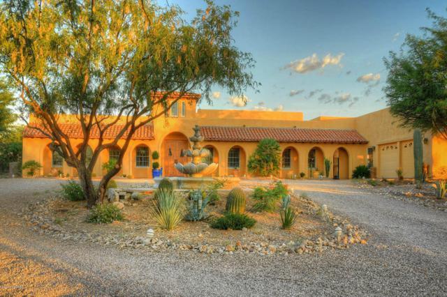 602 E Corte Pasadera Cobrizo, Green Valley, AZ 85614 (#21821538) :: Long Realty - The Vallee Gold Team