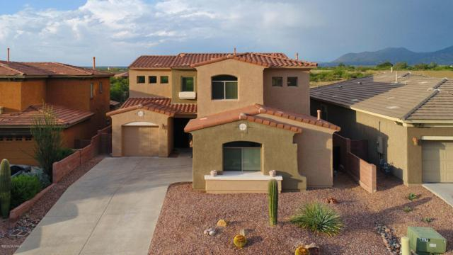 13776 N High Mountain View Place, Tucson, AZ 85739 (#21821755) :: Long Realty - The Vallee Gold Team