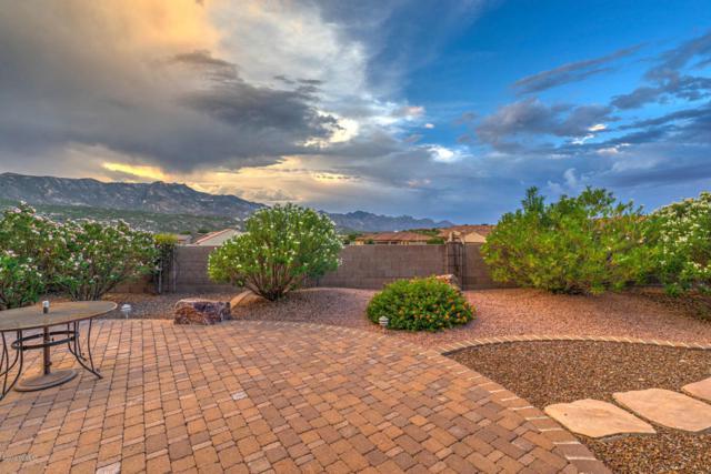 66197 E Box Elder Road, Tucson, AZ 85739 (#21821774) :: RJ Homes Team