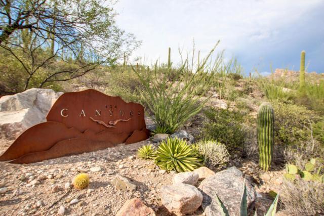 3588 E Secret Canyon Place #61, Tucson, AZ 85718 (#21821780) :: The Local Real Estate Group | Realty Executives