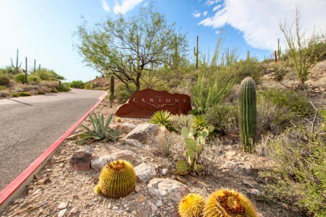 3548 E Secret Canyon Place #60, Tucson, AZ 85718 (#21821792) :: The Local Real Estate Group | Realty Executives