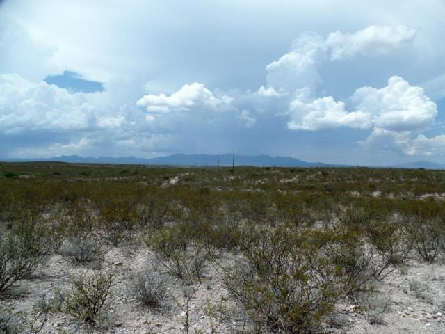 20.1 Acres Cholla Trail #0, Tombstone, AZ 85638 (#21821800) :: RJ Homes Team