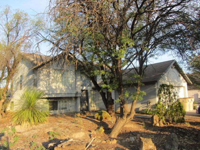 7381 S Camino De La Tierra, Tucson, AZ 85746 (#21821820) :: The KMS Team