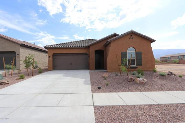 13012 N Spinystar Drive, Oro Valley, AZ 85755 (#21821843) :: Long Realty - The Vallee Gold Team