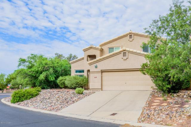 10241 N Wild Turkey Lane, Oro Valley, AZ 85737 (#21821871) :: Long Realty - The Vallee Gold Team