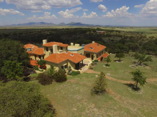 48 Hay Canyon, Elgin, AZ 85611 (#21821884) :: Long Realty - The Vallee Gold Team