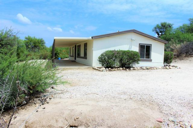 4487 E Wilds Road, Tucson, AZ 85739 (#21821914) :: Long Realty - The Vallee Gold Team
