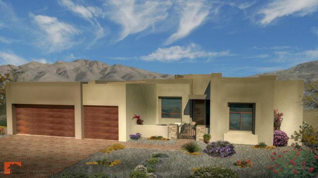 2650 N Megafauna Court, Tucson, AZ 85749 (#21821986) :: Long Realty Company