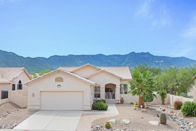 36215 S Wind Crest Drive, Tucson, AZ 85739 (#21821989) :: RJ Homes Team