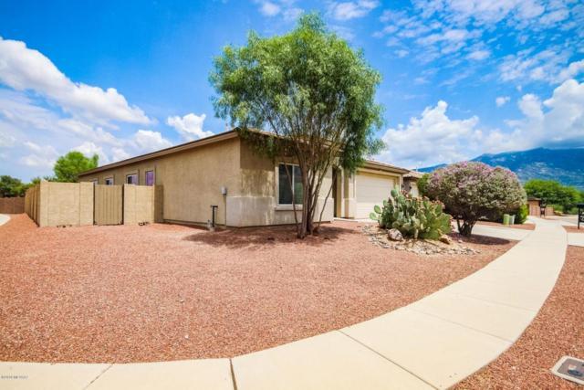 3661 E Canter Road, Tucson, AZ 85739 (#21822018) :: The KMS Team