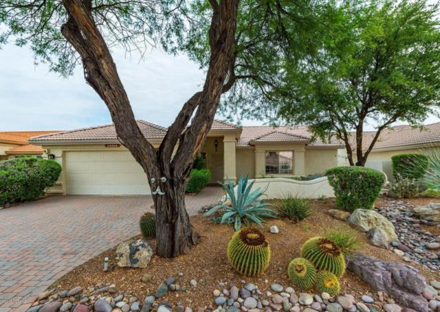 64364 E Galveston Lane, Tucson, AZ 85739 (#21822029) :: RJ Homes Team