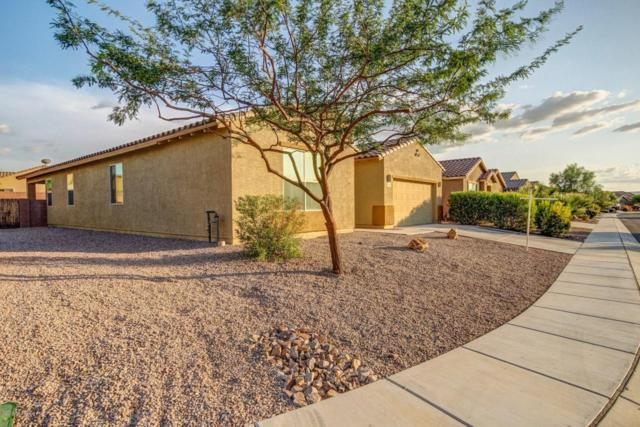 1060 E Wiley Squirrel Lane, Sahuarita, AZ 85629 (#21822097) :: Long Realty Company