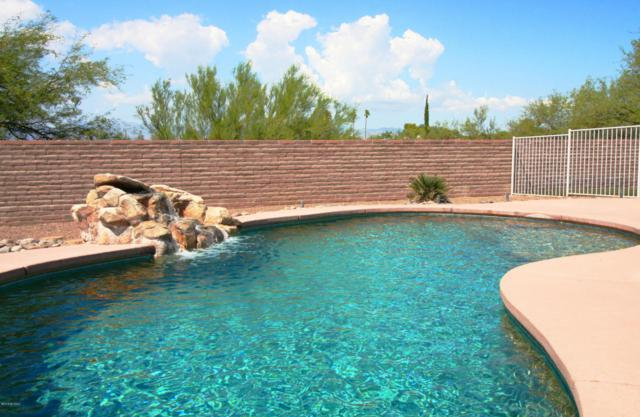 9941 E Lucille Drive, Tucson, AZ 85730 (#21822122) :: The KMS Team
